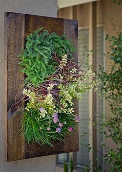 Bright Green Vertical Garden Kit on Wall