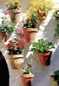 colorful planter pots hanging on wall
