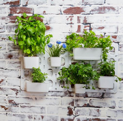 Vertibloom Vertical Garden Kit on Brick Wall