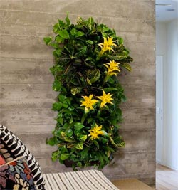 Vertical Indoor Garden Making an indoor vertical garden indoor vertical garden workwithnaturefo