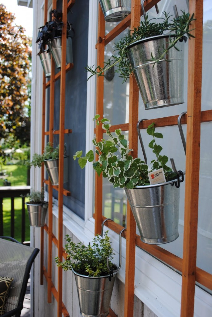 DIY Vertical Trellis Garden Ideas Under $50