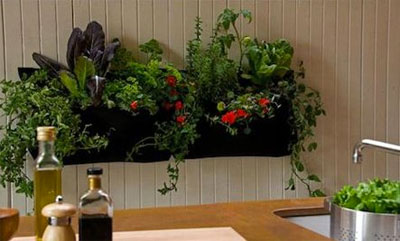 Pocket Planter in the Kitchen