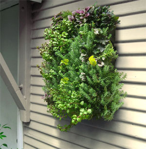 Algreen Wall Planting System