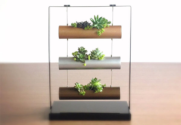 Mini Vertical Garden for Succulents, Cactus and Gifts