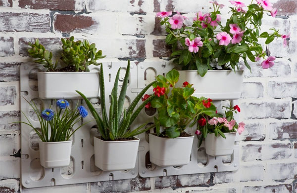 Vertibloom Wall Planter Modules Hanging on Wall