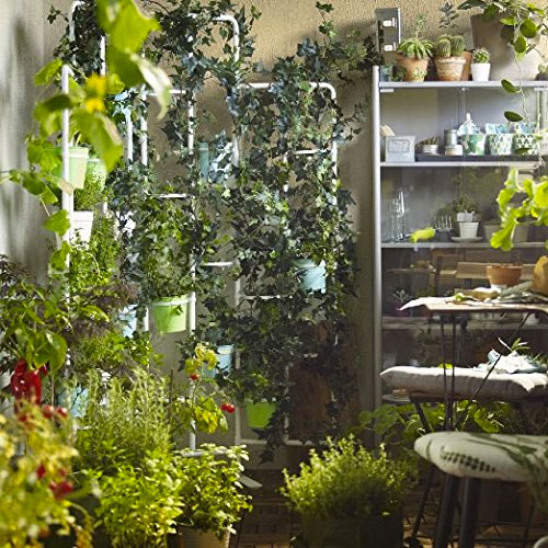 Vertical Plant Stand Being Used to Create a Living Wall Indoors