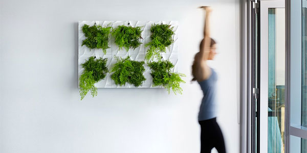 6 No Leak White Indoor Living Wall Planters