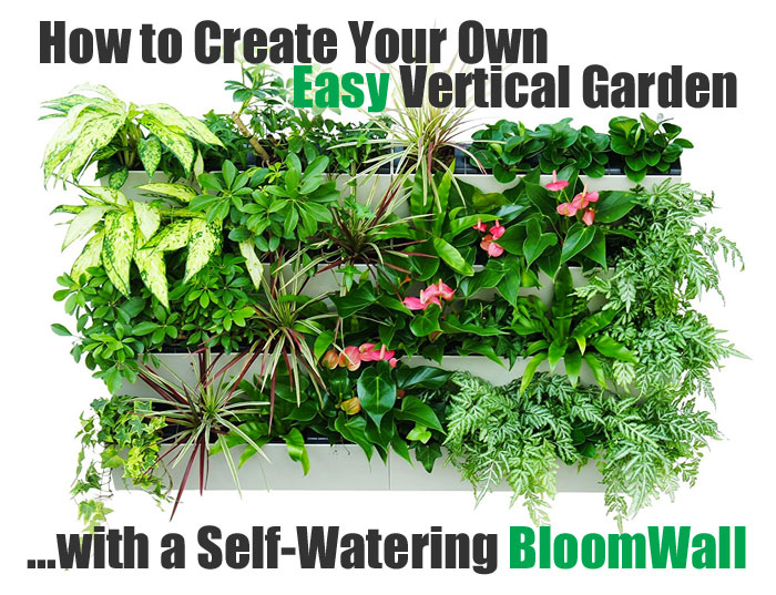 How to Create Your Own Easy Vertical Garden with a Self-Watering BloomWall